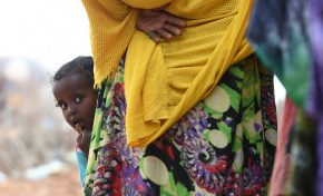 Somaliland's hunger crisis: 'The world doesn't respond until children are dying'