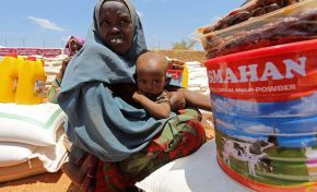Anti-terrorism laws have 'chilling effect' on vital aid deliveries to Somalia